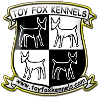 Toy Fox Terrier Kennels